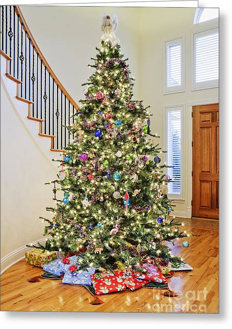 Entryway Greeting Cards - Christmas Tree Greeting Card by Jeremy Woodhouse
