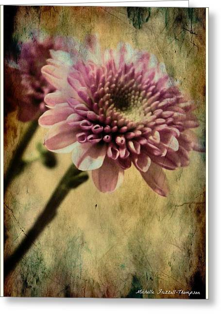 Get Well Card Framed Prints Greeting Cards - Chrysanthemum Greeting Card by Michelle Frizzell-Thompson