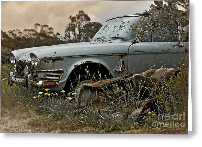 Overgrown Greeting Cards - Chrysler Imperial Greeting Card by Karen Lewis
