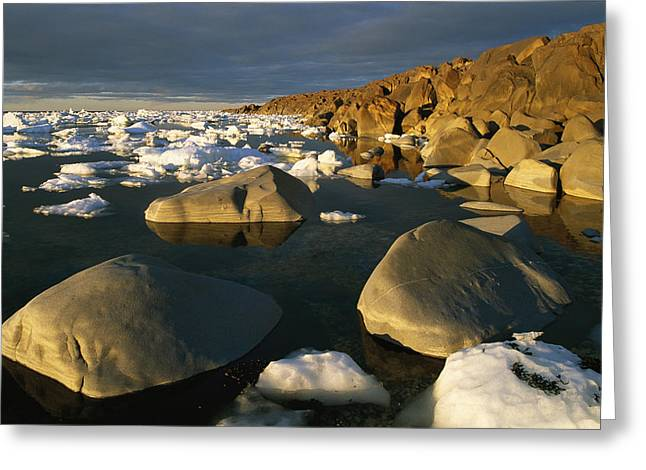 Park Scene Greeting Cards - Chunks Of Ice And Large Rocks Greeting Card by Norbert Rosing