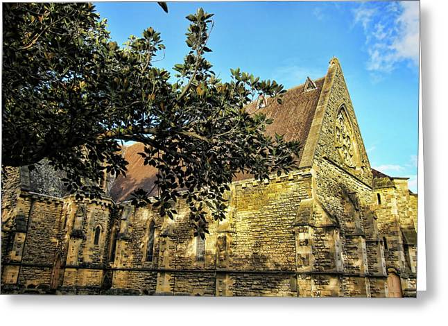 """""""fig Trees"""" Greeting Cards - Church Down the Street Greeting Card by Douglas Barnard"""