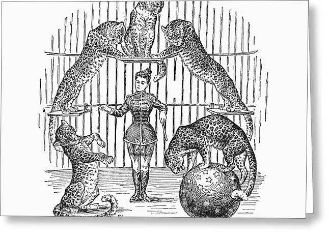 Tamer Greeting Cards - Circus: Animals, 1901 Greeting Card by Granger
