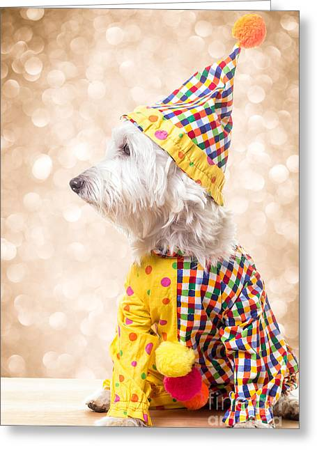 Puppies Photographs Greeting Cards - Circus Clown Dog Greeting Card by Edward Fielding