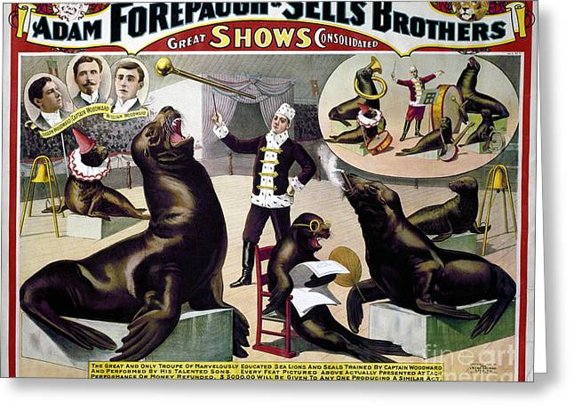 Smoker Greeting Cards - CIRCUS POSTER, c1898 Greeting Card by Granger