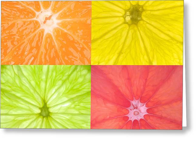 Citrus Greeting Cards - Citrus Fruits Greeting Card by Richard Thomas