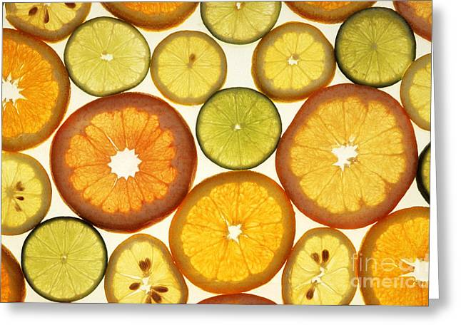 Grapefruit Greeting Cards - Citrus Slices Greeting Card by Photo Researchers