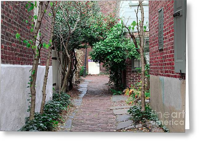 Philadelphia Alley Greeting Cards - City Alley Greeting Card by Extrospection Art
