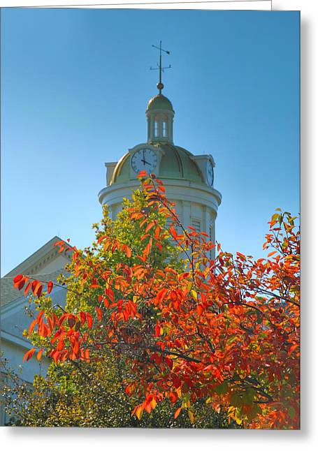 Indiana Autumn Greeting Cards - City Hall Dome And Tree  Greeting Card by Steven Ainsworth