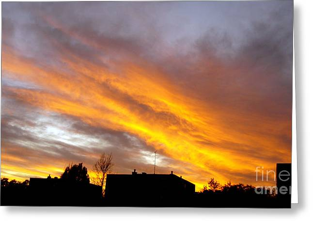 Eps10 Greeting Cards - City in sunset Greeting Card by Odon Czintos