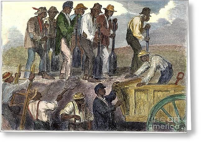 Gullah Greeting Cards - Civil War: Slavery, 1863 Greeting Card by Granger