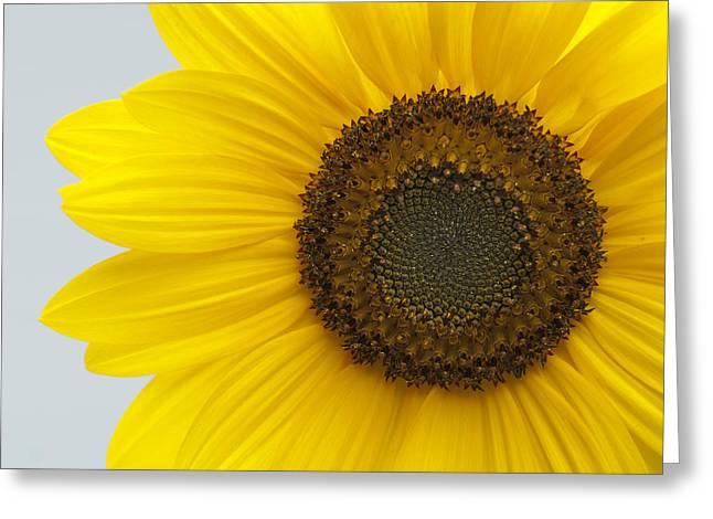 Solar Plexus Chakra Greeting Cards - Clarity Greeting Card by Frank Iusi