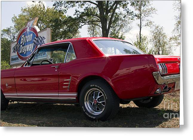 Chevalier Greeting Cards - Classic Mustang Greeting Card by Elizabeth Chevalier