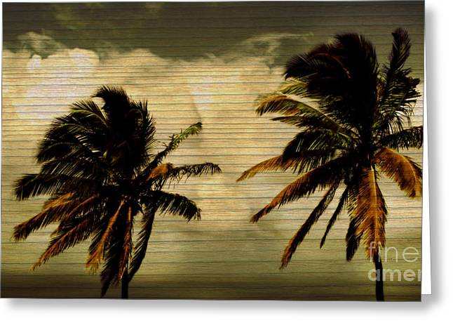 Best Ocean Photography Greeting Cards - Classic Palms Greeting Card by Perry Webster