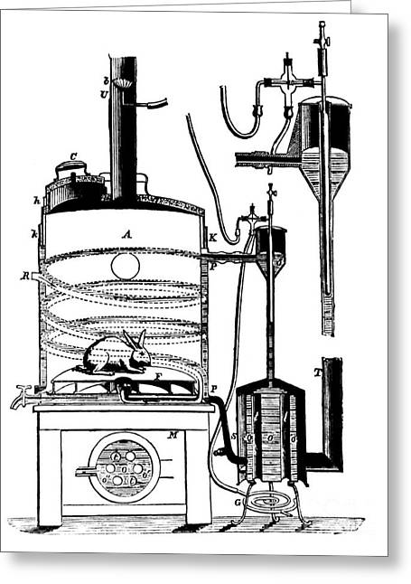 Objectivity Greeting Cards - Claude Bernards Animal Homeostasis Study Greeting Card by Science Source