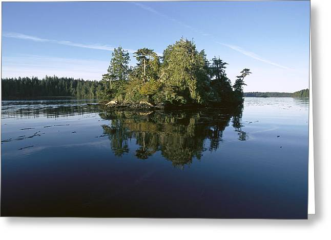 Clayoquot Sound Vancouver Island Greeting Card by Flip Nicklin