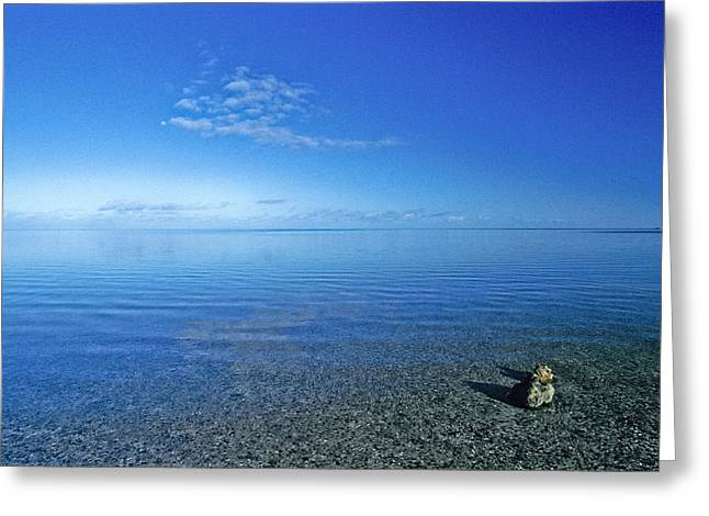 Shark Bay Greeting Cards - Clear Blue Skies Settle Over The Mirror Greeting Card by Jason Edwards