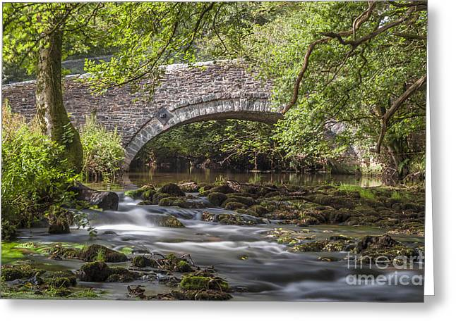 Stream Digital Art Greeting Cards - Clearbrook River Meavy Greeting Card by Donald Davis