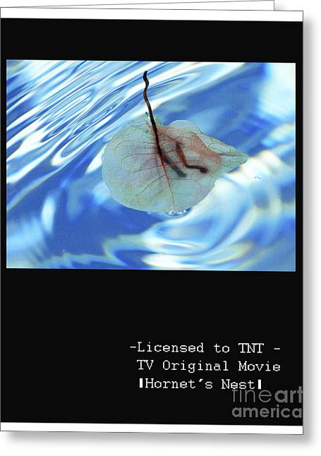 Baby Licensing Greeting Cards - cleared art for film and TV Greeting Card by Anahi DeCanio