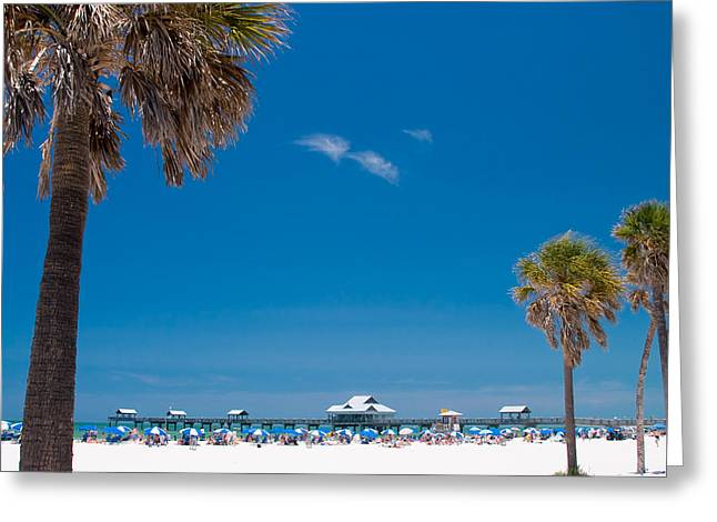 Umbrellas Greeting Cards - Clearwater Beach Greeting Card by Adam Romanowicz