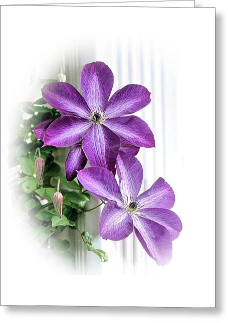 Bloomer Greeting Cards - Clematis Greeting Card by Kristin Elmquist