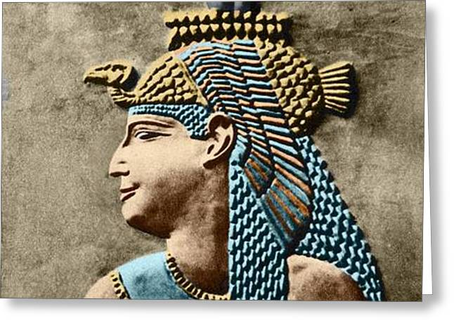Cleopatra Vii Greeting Card by Sheila Terry