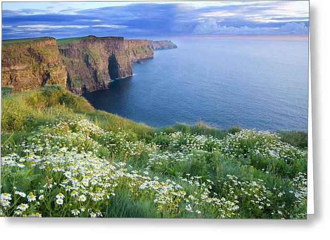 Atlantic Beaches Greeting Cards - Cliffs Of Moher, Co Clare, Ireland Greeting Card by Gareth McCormack