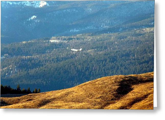 Grazing Snow Greeting Cards - Climbing Skyward Greeting Card by Will Borden
