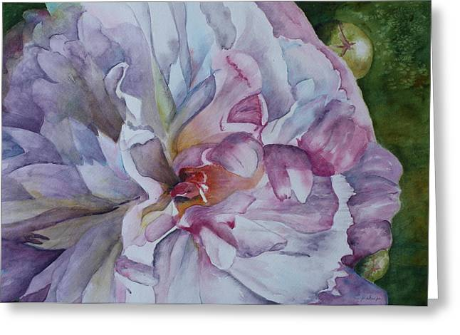 Patsy Sharpe Greeting Cards - Close Focus Peony Greeting Card by Patsy Sharpe