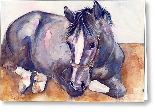 Gray Horse Greeting Cards - Close Your Eyes Greeting Card by Maria