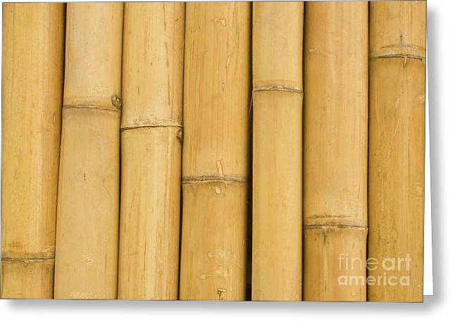 Bamboo Fence Greeting Cards - Closed Up Bamboo Background Greeting Card by Srinakorn Tangwai