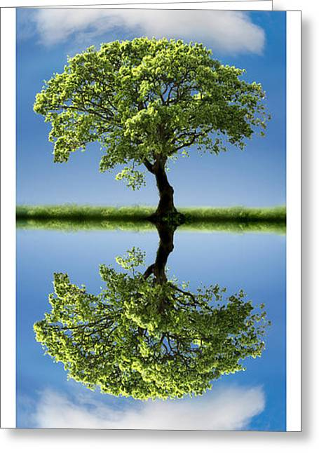 Reflecting Water Greeting Cards - Cloud Cover Reflection Greeting Card by Mal Bray
