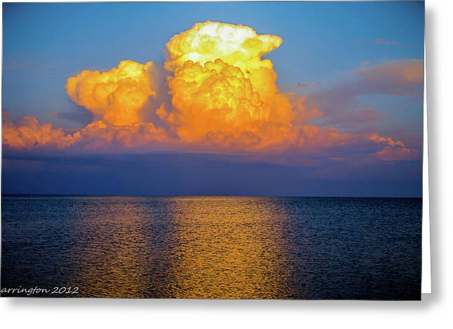Cedar Key Greeting Cards - Cloud Explosion Greeting Card by Shannon Harrington