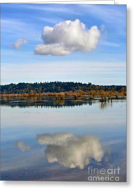 Tidal Photographs Greeting Cards - Cloud Greeting Card by Sean Griffin