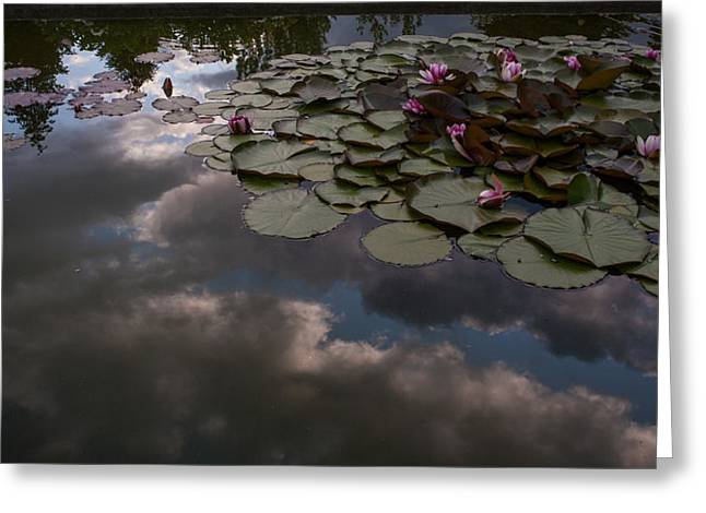Clouded Pond Greeting Card by Mike Reid