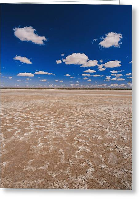 Dry Lake Greeting Cards - Clouds Float In A Blue Sky Above A Dry Greeting Card by Jason Edwards