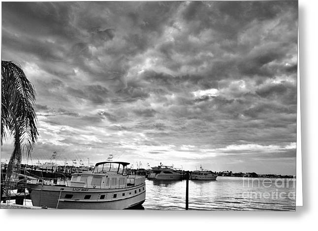 St. Lucie River Greeting Cards - Clouds Over the Lily May B-W Greeting Card by Lynda Dawson-Youngclaus