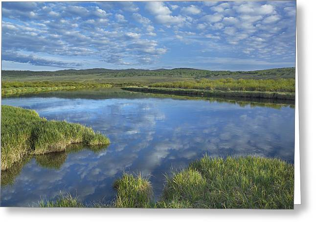 Bridger Teton Greeting Cards - Clouds Reflected In The Green River Greeting Card by Tim Fitzharris