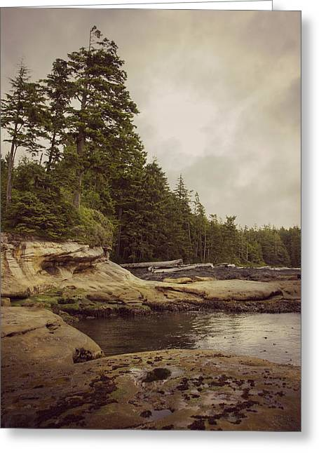 Cloudy Daydreams - Botanical Beach B.c. Greeting Card by Marilyn Wilson