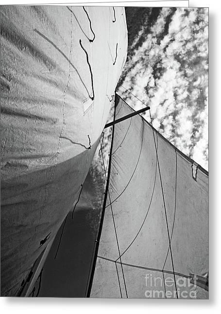 Sami Sarkis Photographs Greeting Cards - Cloudy sky seen through billowing white sails Greeting Card by Sami Sarkis