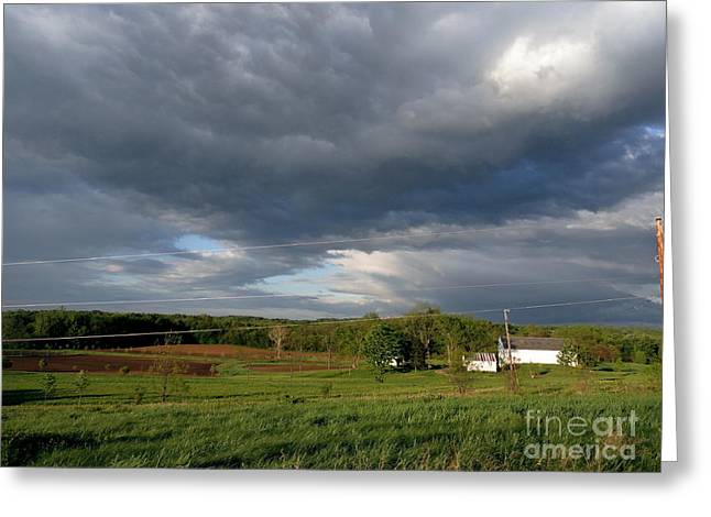 Flora Photographs Greeting Cards - cloudy with a Chance of Paint 2 Greeting Card by Trish Hale