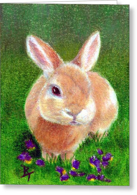 House Pet Drawings Greeting Cards - Clover aceo Greeting Card by Brenda Thour