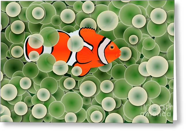 Clown Fish Greeting Cards - Clown Fish in Green Anemone Polyps Greeting Card by Michal Boubin