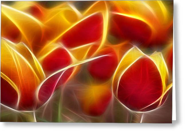 Morph Greeting Cards - Cluisiana Tulips Triptych Panel 2 Greeting Card by Peter Piatt