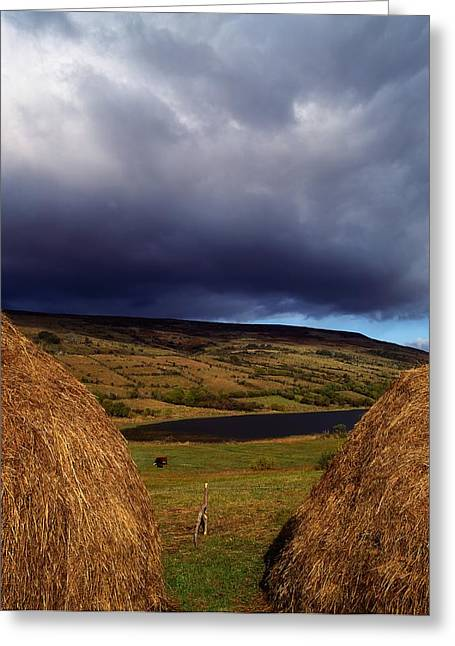 Fed Greeting Cards - Co Cavan, Lake In West Cavan Mnts Greeting Card by The Irish Image Collection