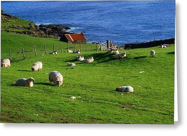 Fed Greeting Cards - Co Cork, Beara Peninsula Greeting Card by The Irish Image Collection