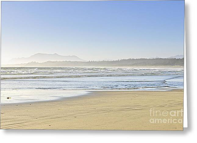 Foggy Beach Greeting Cards - Coast of Pacific ocean on Vancouver Island Greeting Card by Elena Elisseeva