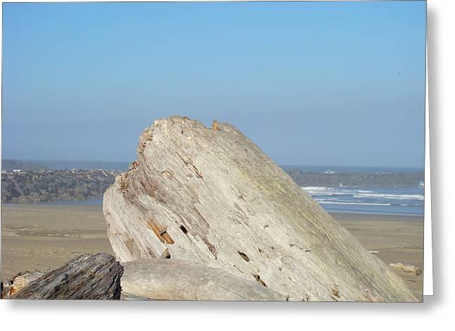 Beach Driftwood Greeting Cards - Coastal Art Prints Driftwood Ocean Beach Sky Greeting Card by Baslee Troutman