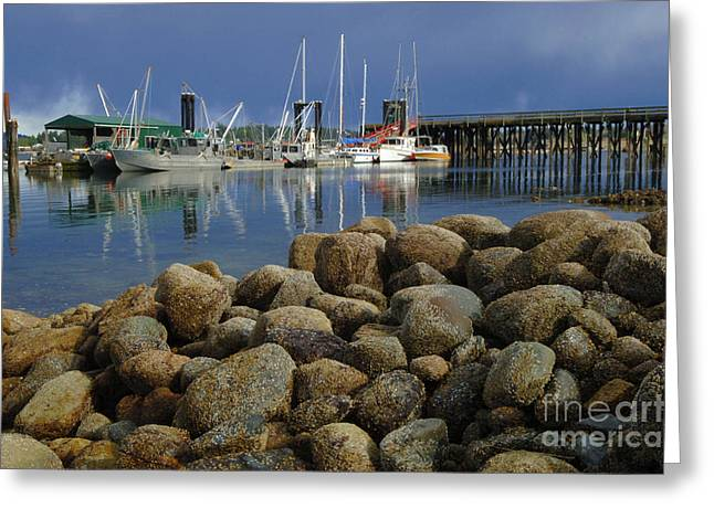 Vancouver Greeting Cards - Coastal Beauty Fanny Bay Greeting Card by Bob Christopher