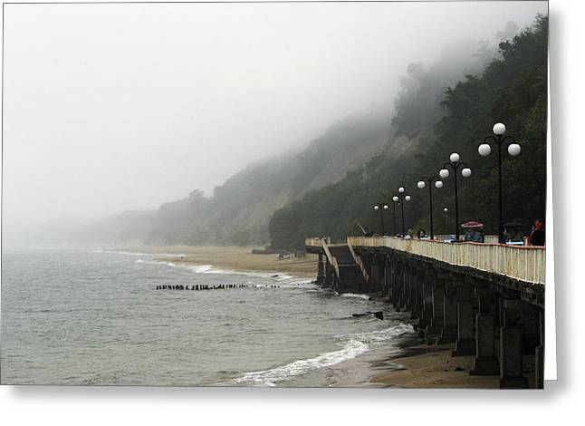 Foggy Beach Greeting Cards - Coastal Fog Greeting Card by Ria Novosti