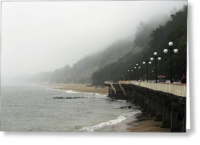 Foggy Beach Greeting Cards - Coastal Fog Greeting Card by Ria Novosti